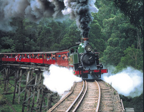 Puffing Billy - Find Attractions