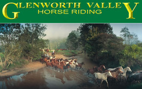 Glenworth Valley Horseriding - Find Attractions