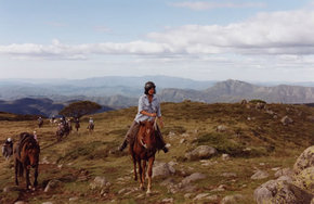High Country Horses - Find Attractions