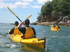 Sydney Harbour Kayaks - Find Attractions