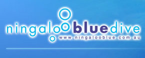 Ningaloo Blue Dive - Find Attractions