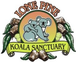 Lone Pine Koala Sanctuary - Find Attractions