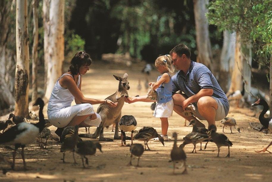 Billabong Sanctuary - Find Attractions