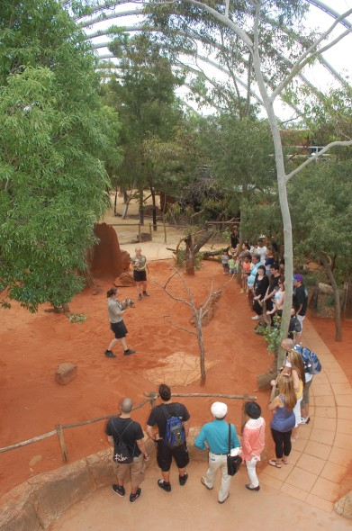 WILD LIFE Sydney Zoo - Find Attractions