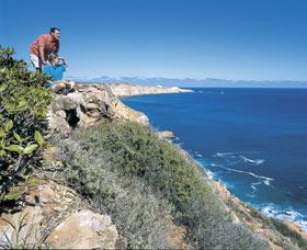 Cape Cuvier Coast - Find Attractions