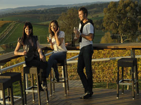 The Lane Vineyard - Find Attractions