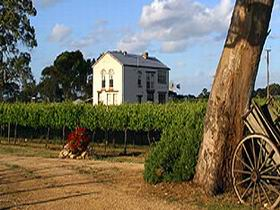 Highbank Vineyards - Find Attractions