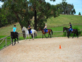 Megan Jones Riding School and Trail Rides - Find Attractions