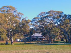 Old Wilpena Station - Find Attractions