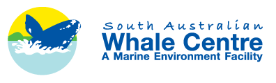 South Australian Whale Centre - Find Attractions