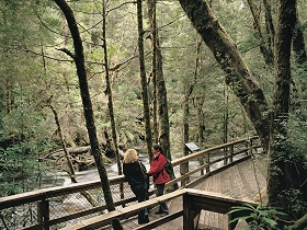 Franklin River Nature Trail - Find Attractions