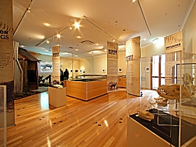 Tasmanian Tiger Exhibition - Find Attractions