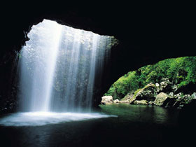 Natural Bridge Springbrook National Park - Find Attractions