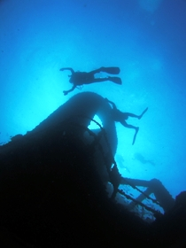 Ex HMAS Brisbane Dive Site - Find Attractions