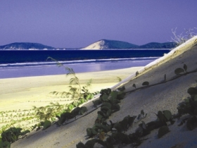 Cooloola Great Sandy National Park - Find Attractions