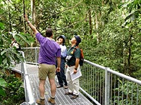 Daintree Discovery Centre - Find Attractions