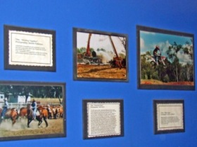 Town Hall Photographic Display - Find Attractions
