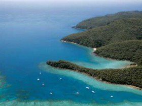 Butterfly Bay - Hook Island - Find Attractions
