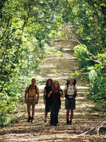 Wet Tropics Great Walk - Find Attractions