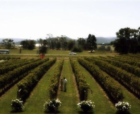 Rochford Wines - Find Attractions