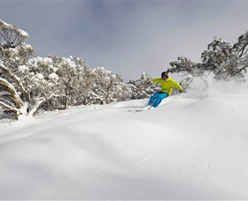 Mt Buller and Mt Stirling Alpine Resort - Find Attractions