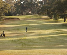 Cohuna Golf Club - Find Attractions