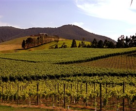 Soumah of Yarra Valley - Find Attractions