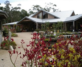 Kuranga Native Nursery and Paperbark Cafe - Find Attractions