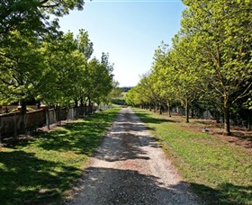 Waybourne Winery - Find Attractions