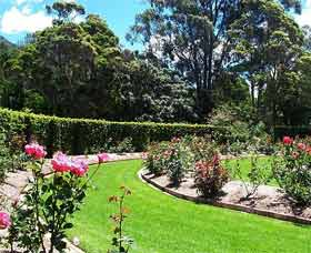 Wollongong Botanic Garden - Find Attractions