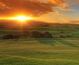 Links Shell Cove Golf Course - Find Attractions