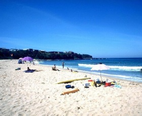 Culburra Surf Beach - Find Attractions