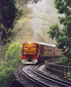 Cockatoo Run - Scenic Tour Train operated by 3801 Limited - Find Attractions