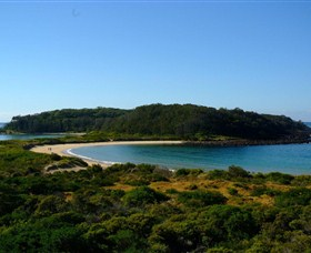 Broulee Island Walk - Find Attractions