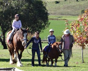 Bathurst Farm Experience - Find Attractions