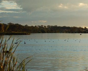 Lake Inverell Reserve - Find Attractions