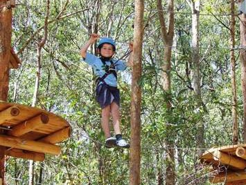 TreeTops Newcastle - Find Attractions