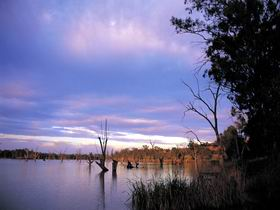 Loch Luna Game Reserve and Moorook Game Reserve - Find Attractions