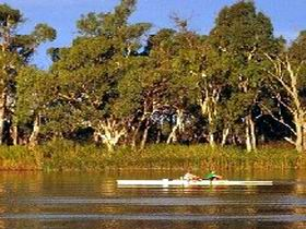Martin Bend Reserve - Find Attractions