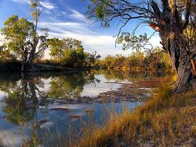 Murray River National Park - Find Attractions