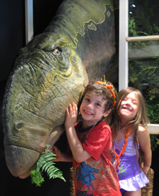 Australian Opal Centre - Find Attractions