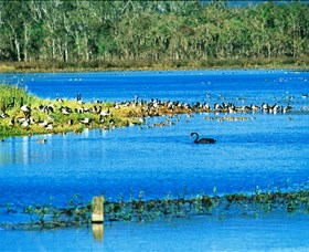 Hasties Swamp National Park - Find Attractions