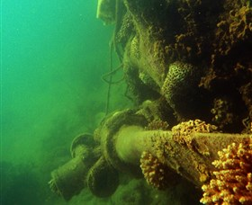 Wreck Diving at Magnetic Island - Find Attractions