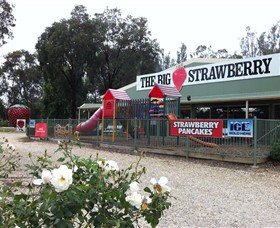 The Big Strawberry - Find Attractions