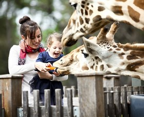 Taronga Western Plains Zoo Dubbo - Find Attractions