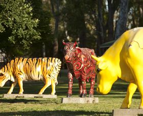 Greater Shepparton's Moooving Art - Find Attractions