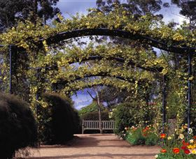 Blue Mountains Botanic Garden - Find Attractions