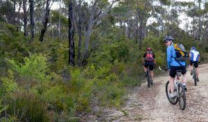 McMahon's Point ride - Wentworth Falls - Find Attractions