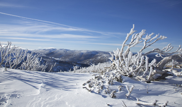 Rock Creek snowshoe track - Find Attractions