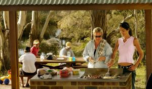 Apsley Falls picnic area - Find Attractions